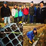 Planting scallions at Clearview Farm with Kurt Forman! Photo credit: Sarah Meyer.